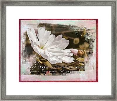Faith Love And Hope - Flower Art Framed Print by Jordan Blackstone