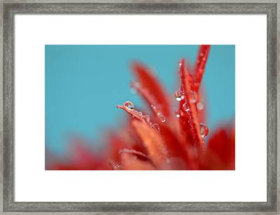 Faith Framed Print by Melanie Moraga