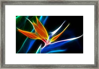 Framed Print featuring the digital art Faithful by Karen Showell