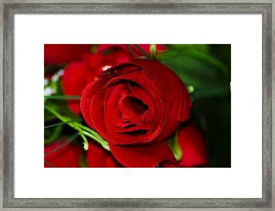 Framed Print featuring the photograph Fake Love  by Naomi Burgess