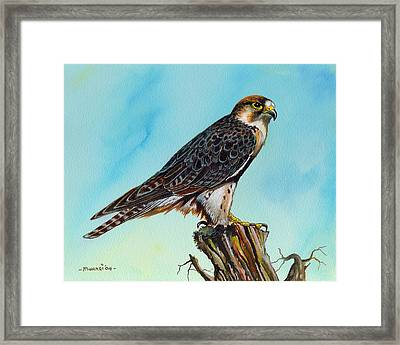 Framed Print featuring the painting Falcon On Stump by Anthony Mwangi
