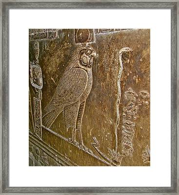Falcon Symbol For Horus In A Crypt In Temple Of Hathor In Dendera-egypt Framed Print