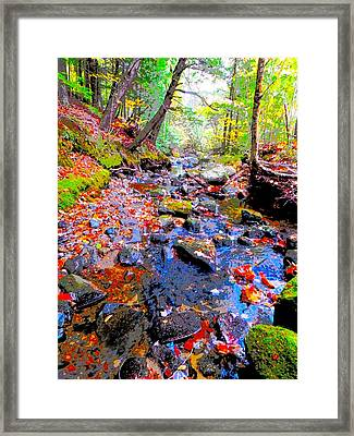 Fall 2014 Y129 Framed Print