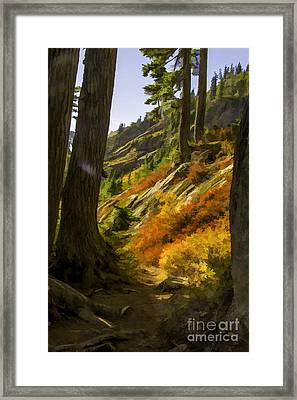 Fall Afternoon At Mount Baker Framed Print