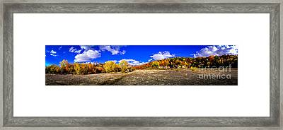 Fall All Around Framed Print