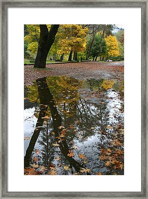 Framed Print featuring the photograph Fall All The Way by Marie Neder