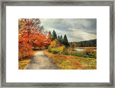 Fall Along Lake Nevin Framed Print