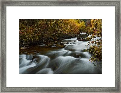 Fall Along Palisades Creek Idaho Framed Print by Vishwanath Bhat