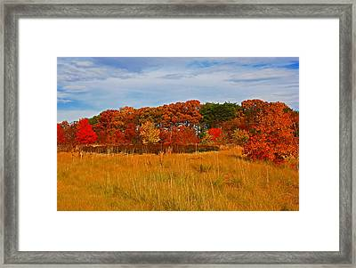 Framed Print featuring the photograph Fall Along The Highway by Andy Lawless
