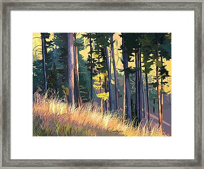 Fall Alpenglow Trees Grasses Framed Print