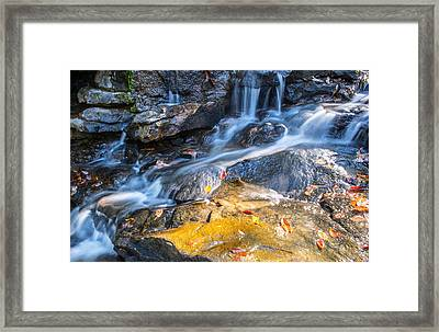 Fall And Winter Collide Framed Print by Parker Cunningham