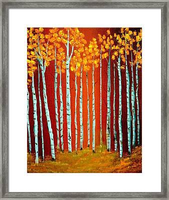 Fall Aspen Framed Print by Antonia Citrino