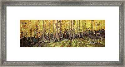 Fall Aspen Panorama Framed Print by Gary Kim