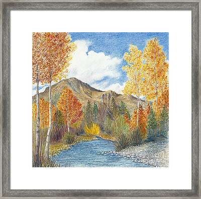 Fall Aspens Framed Print
