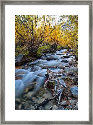 Fall At Big Pine Creek Framed Print