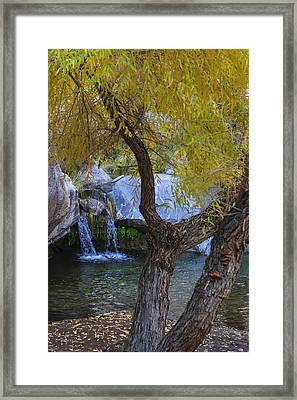 Fall At Murray Falls I Framed Print by Scott Campbell