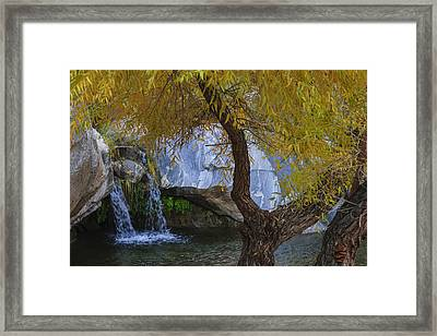 Fall At Murray Falls II Framed Print by Scott Campbell