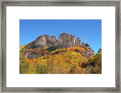 Fall At Seneca Rocks Framed Print