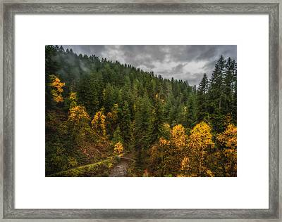 Fall At Silver Falls Framed Print by Dennis Bucklin