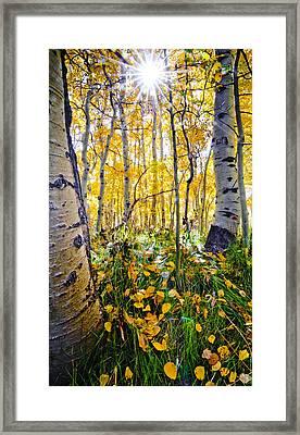 Fall At Silver Lake Framed Print
