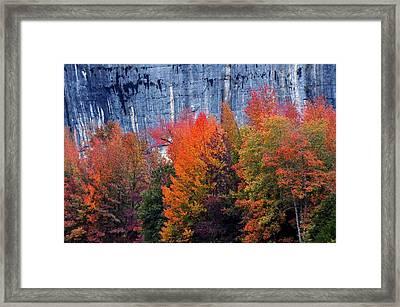 Fall At Steele Creek Framed Print by Marty Koch