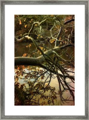 Fall At The Creek Framed Print by Ellen Heaverlo