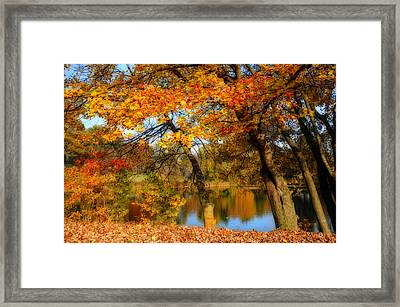Fall At The Pond 2 Framed Print by Lynn Bauer