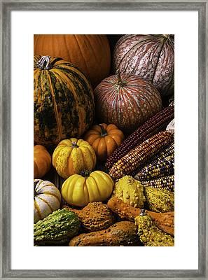 Fall Autumn Abundance Framed Print