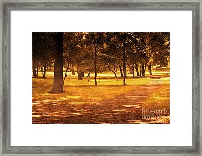Fall Autumn Park Framed Print by Michal Bednarek