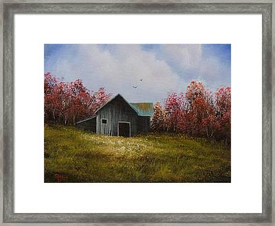 Fall Begins Framed Print by C Steele