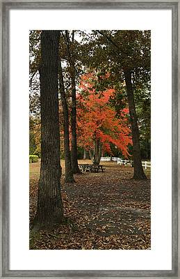 Fall Brings Changes  Framed Print