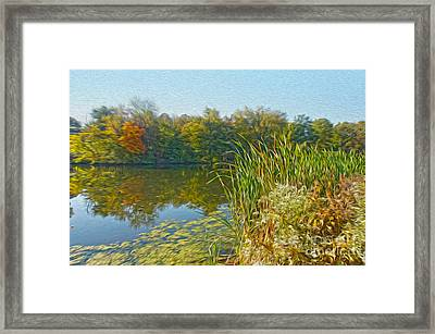 Fall By The River Framed Print by Nur Roy