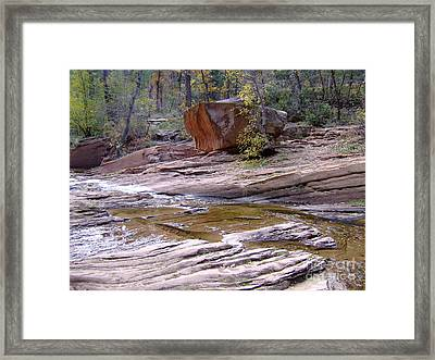 Fall Color 6419 Framed Print