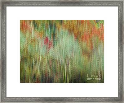 Fall Color Abstract 2 Framed Print