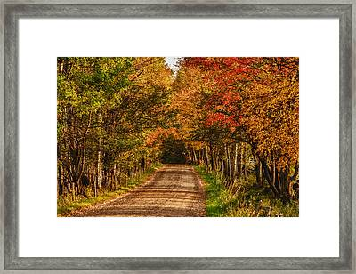 Framed Print featuring the photograph Fall Color Along A Dirt Backroad by Jeff Folger
