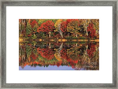 Framed Print featuring the photograph Fall Color Reflected In Thornton Lake Michigan by Dave Welling
