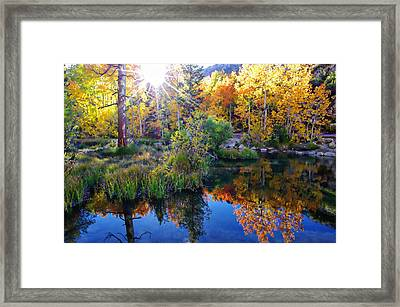 Fall Color Reflection Along Bishop Creek Framed Print