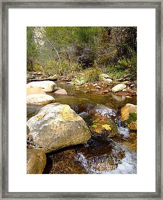 Fall Colors 6390 Framed Print