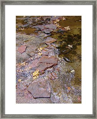 Fall Colors 6443 Framed Print