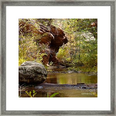 Fall Colors 6472-02 Framed Print