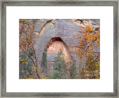 Fall Colors 6482 Framed Print