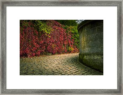 Canvas Wall Art Fall Colors Framed Print