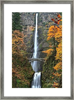 Fall Colors At Multnomah Framed Print by Adam Jewell