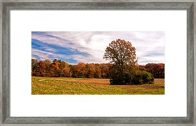 Fall Colors At Poets Walk Park Framed Print
