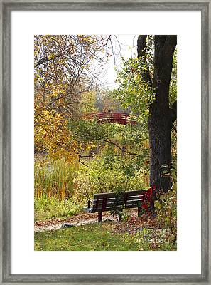 Fall Colors Framed Print by Cendrine Marrouat