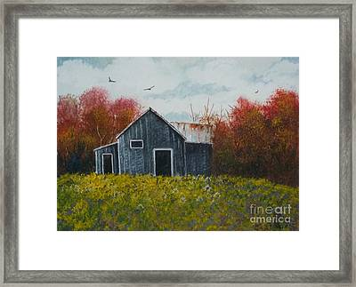 Fall Colors Framed Print by Don Hand