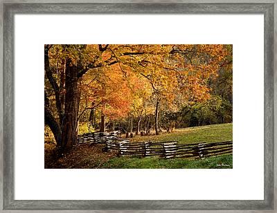 Fall Colors, Asheville, North Carolina Framed Print