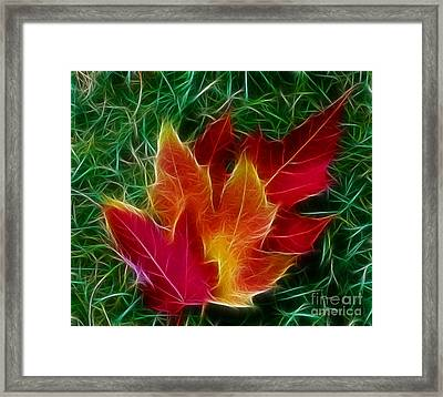 Framed Print featuring the photograph Fall Colors by JRP Photography