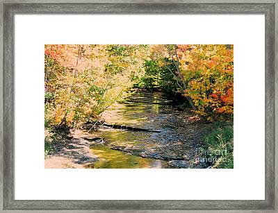 Fall Colors Framed Print by Kathleen Struckle