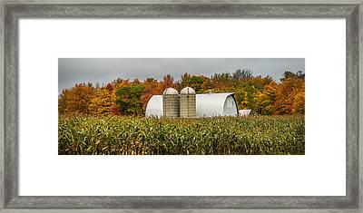 Fall Colors On A Farm Framed Print by Paul Freidlund